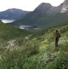 Russvik i Tysfjord